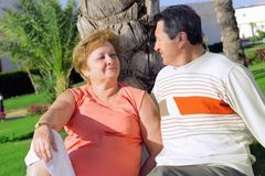 Mature couple near palm-tree. Stock Photo