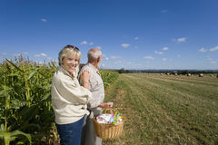 Mature couple with pinwheel in basket by corn field, portrait of woman smiling stock photography