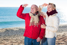 Mature couple pointing on beach Stock Photos