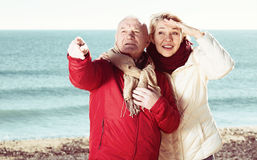 Mature couple pointing on beach Stock Photography