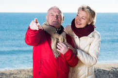 Mature couple pointing on beach Royalty Free Stock Photo