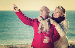 Mature couple pointing on beach Stock Images