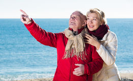 Mature couple pointing on beach Stock Image
