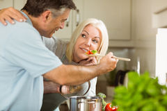 Mature couple preparing vegetarian meal together Royalty Free Stock Images