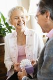 Mature couple with present. Royalty Free Stock Photos