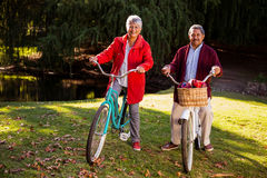 Mature couple riding bicycle at park Royalty Free Stock Images