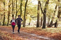 Mature Couple Running Through Autumn Woodland Together stock photo