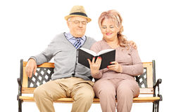 Mature couple seated on wooden bench reading a book Stock Image