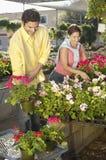 Mature Couple Selecting Flower Plants Stock Photos