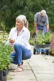 Mature Couple Shopping At Garden Centre Stock Photo