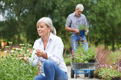 Mature Couple Shopping At Garden Centre. Mature Couple Shopping At Outdoor Garden Centre Royalty Free Stock Photography