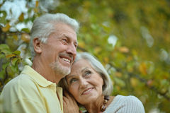 Mature couple in spring park Stock Photography