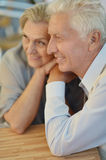 Mature couple in spring park Royalty Free Stock Photography