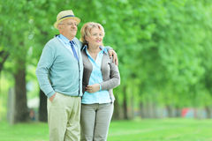 Mature couple standing in a park Royalty Free Stock Photos
