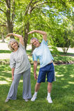 Mature couple stretching hands at park Stock Photos