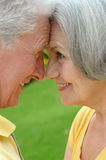 Mature couple on  in summer park Royalty Free Stock Photography