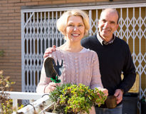 Mature couple at terrace near home. Mature couple at a terrace near their home with gardening instruments and cup of hot beverage stock photos