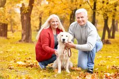 Mature couple with their dog. In park Royalty Free Stock Photo