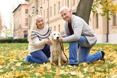 Mature couple with their dog. In park Royalty Free Stock Images