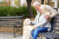 Mature couple with their dog resting. In park Royalty Free Stock Images