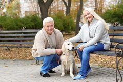 Mature couple with their dog resting. In park Stock Images