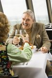 Mature couple toasting. stock photography