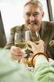 Mature couple toasting. stock photos