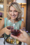 Mature couple toasting their glasses of red wine Stock Photography