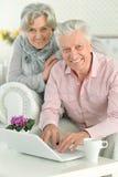 Mature couple using laptop. Portrait of a mature couple using laptop, close up Stock Images