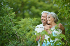 Mature couple on  walk  in summer Royalty Free Stock Photos