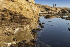 Mature couple walking on the beach with rocks and seaweed. estoril portugal. Europe royalty free stock photography