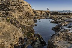 Mature couple walking on the beach with rocks and seaweed. estoril portugal. Europe royalty free stock photo