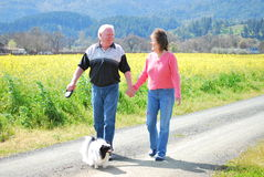 Mature Couple on a Afternoon Walk on a Country road. Gray haired man and a brunette woman walking on a country road with a small black and white dog holding Royalty Free Stock Photos