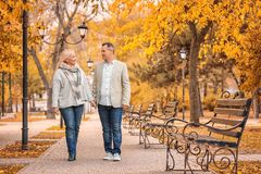 Mature couple walking in park royalty free stock images