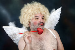 Mature Cupid Royalty Free Stock Photos