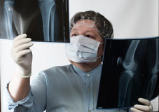 Mature doctor examining X-ray image Stock Photos