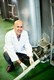 Mature employee working in raw milk sector. Of livestock farm Royalty Free Stock Photo
