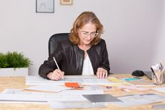 Mature experienced businesswoman Royalty Free Stock Images