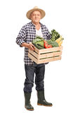 Mature farmer with a crate full of vegetables stock photography
