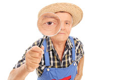 Mature farmer looking through a magnifying glass Royalty Free Stock Photos
