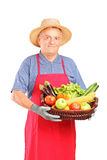 Mature farmer man holding a basket Royalty Free Stock Photo