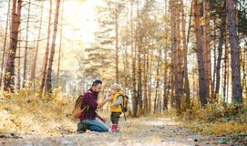 A mature father with backpack and toddler son in an autumn forest. stock photos