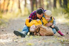A mature father with backpack and toddler son in an autumn forest. stock photo