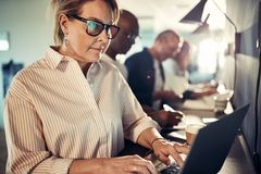 Focused mature designer working with a laptop in an office royalty free stock photography