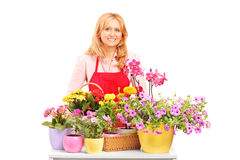 A mature female florist and flowers Royalty Free Stock Photo
