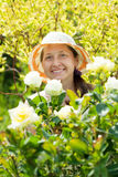 Mature female  florists Stock Photography