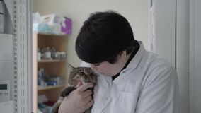Mature female veterinarian in white gown holding on arms cute nervous cat, trying to calm animal, touching his nose with. The finger. The shelf with medical stock footage