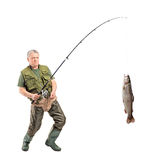 Mature fisherman catching a fish Royalty Free Stock Photos