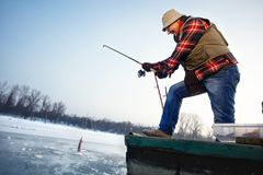 Fisherman draws hooked fish from frozen water. Mature fisherman draws hooked fish from frozen water royalty free stock photos