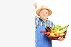 Mature florist holding a bunch of flowers and posing on a blank Royalty Free Stock Photography